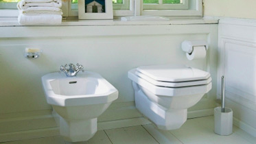 toilet and bidet seats